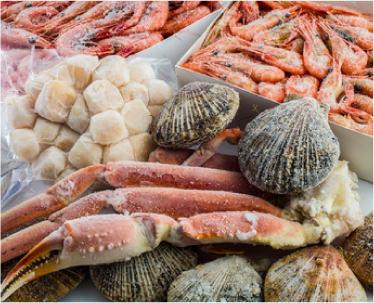 規格基準で定められた生食用鮮魚介類